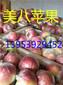 安阳片红红富士苹果产地直销价格