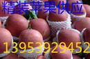 中山条纹红红富士苹果低价供应