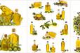 武汉橄榄油进口需要中检吗