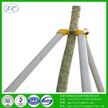 玻璃纤维管树木支撑园?#36136;?#33495;支撑杆高强度玻纤管新型树木保护套杆厂家图片