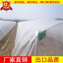 供应玻璃纤维杆7mm纤维杆厂家生产保温大棚杆加工菜棚支架图片