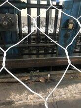 陕西西安石笼网石笼网箱,包塑石笼网,镀锌石笼网,铅丝笼图片