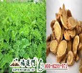 黄芪增产首选福进门中药材膨果水溶肥