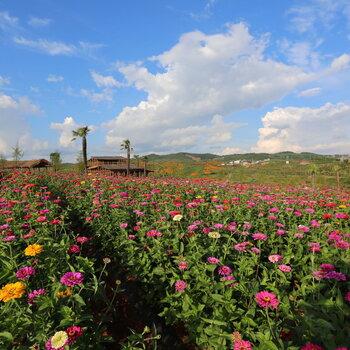 富源多乐园风景区图片