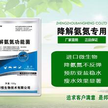 养殖水体氨氮超标及防治yjudsjhv图片