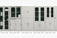 海南专业生产文件柜/移动门柜/更衣柜/