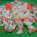 福建石英砂滤料生产厂家供应商价格