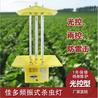 佳多太陽能頻振式殺蟲燈防治西藍花種植病蟲害的強效綠控技術應用分析