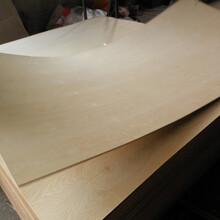 大量出售一次成型10mm包装板防水胶合板托盘板异形板图片
