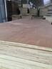 二次成型多层板木工板出口包装箱板垫板胶合板三合板