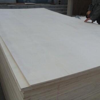 厂家直销多层板杨木胶合板包装箱专用多层胶合板