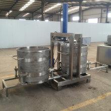 冰冻杨梅压榨机单桶收汁机304材质千斤顶压榨机图片