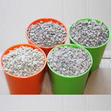 参川矿产品加工厂大量生产鱼缸水净化用麦饭石块水处理用麦饭石保健麦饭石球图片