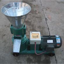 猪饲料颗粒机多少钱一台柴油机带动饲料颗粒机厂家图片