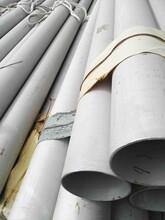 282.5316L不锈钢管厂家现货可定做