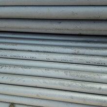 厦门310S不锈钢管代理销售207.5