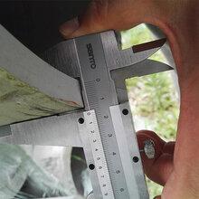 福州TP321不锈钢管无缝钢管10020