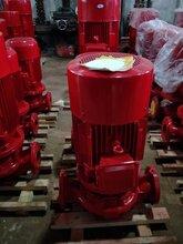 管道泵圖片/管道泵重量/管道泵電機江洋泵業圖片
