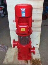 离心泵扬程多高XBD15/20L稳压泵流量消防泵图片