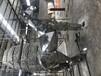 嘉兴市平湖市不锈钢雕塑景观雕塑园林雕塑,全新技术