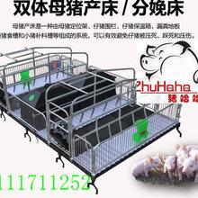 河北泊头福临自产自销母猪产床保育两用可折叠产床双体两用型母猪产床图片