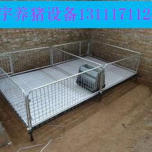 高培保育栏介绍保育床特点使用优点福宇养猪设备有限公司图片
