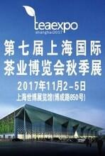 2017第七届上海国际茶博会秋季展