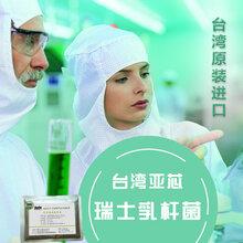 批发瑞士乳杆菌乳酸菌益生菌保健品食品添加剂台湾亚芯品牌