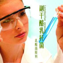 副干酪乳杆菌乳酸菌保健品原料益生菌食品添加剂台湾亚芯品牌