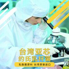 约氏乳杆菌乳酸菌保健品原料益生菌冻干粉台湾亚芯品牌
