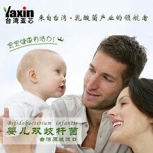 婴儿双歧杆菌乳酸菌粉冻干粉食品添加剂益生菌台湾亚芯品牌