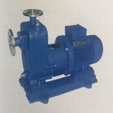 供西宁自吸磁力泵和青海自吸泵哪家好