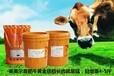 肉牛催肥剂