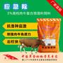 肉牛育肥与疾病防治图片