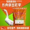 鹅增肥剂、鹅吃什么增肥快?优质的鹅饲料厂家
