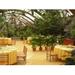 生态餐厅设计厂家