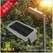 10WLED太阳能雷达感应路灯(带光控)农村小区庭院路灯专用不用担心分摊电费