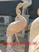 现货石雕鹤大理石丹顶鹤公园仙鹤雕像