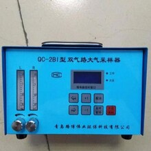 QC-2AI雙氣路大氣采樣器圖片