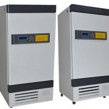 穩定性試驗箱LHH-80實驗設備試驗箱制藥專用圖片