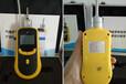 泵吸式紅外二氧化碳氣體檢測儀