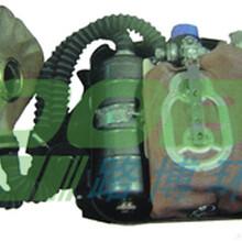 LB-RHZKF正压式消防空气呼吸器图片