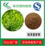 绿茶提取物慧科厂家品质保证现货包邮图片