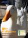 家禽催肥用七天平均增肥3-5两