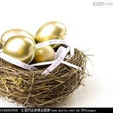 广州恒指期货刷单团队、代理加盟图片