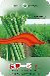 新品种京笋一号-高产芦笋种子