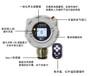 华瑞RAEAlertECFGM-3300固定式硫化氢气体检测仪