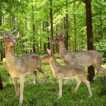 高档场馆用仿真水鹿标本高档仿真动物制作接受定制