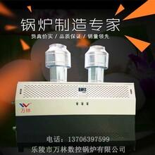 山东燃气锅炉厂家直销1吨常压热水锅炉节能环保热效率高图片