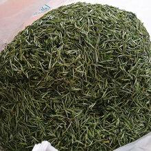 安徽特产九华佛茶池州特级茶叶绿茶春茶毛峰图片